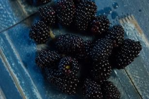 Fruit-1-7